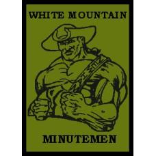 New Hampshire Minutemen