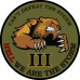We Are The Storm 3.5 inch patch