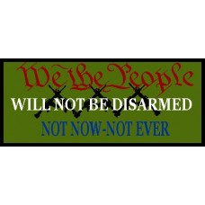 We The People Plate Carrier Patch 3 X 7 inch